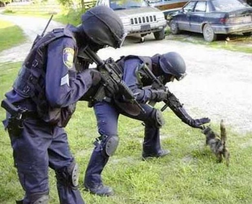 322-funny-police-pictures-2