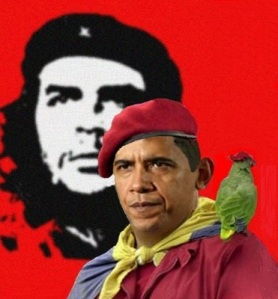 Barack Chavez_Socialist-in-the-making