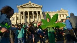 uruguay-marijuana