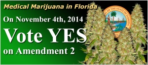 medical-marijuana-in-florida-2014b