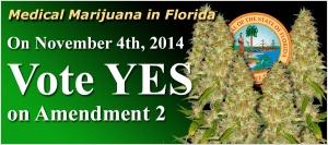 medical-marijuana-in-florida-2014b